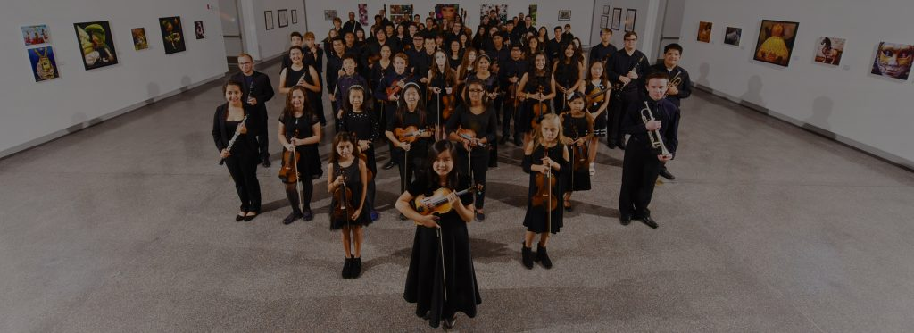 The Young Artists Orchestra of Las Vegas